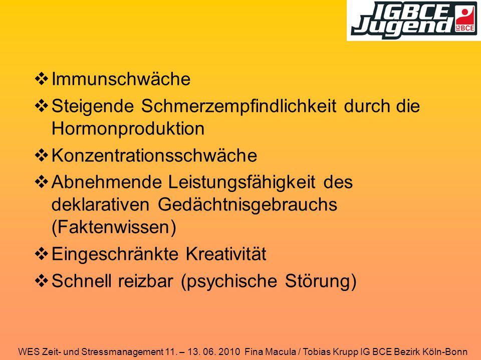 WES Zeit- und Stressmanagement 11. – 13. 06. 2010 Fina Macula / Tobias Krupp IG BCE Bezirk Köln-Bonn  Immunschwäche  Steigende Schmerzempfindlichkei
