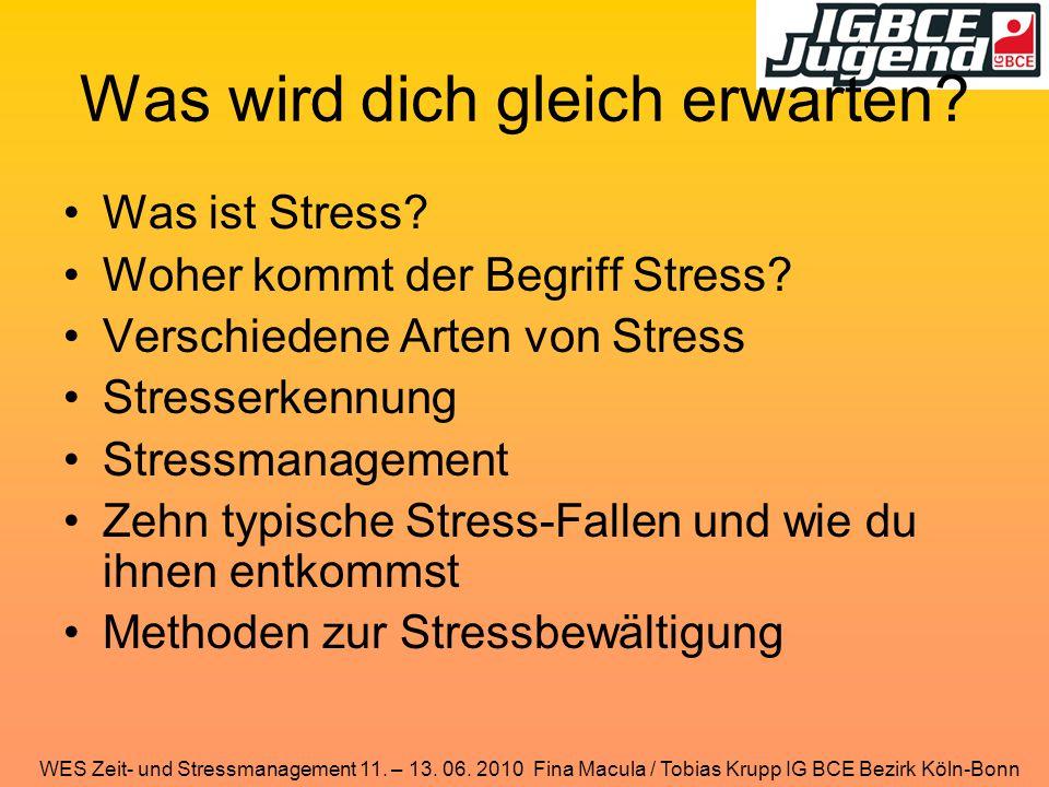 WES Zeit- und Stressmanagement 11. – 13. 06. 2010 Fina Macula / Tobias Krupp IG BCE Bezirk Köln-Bonn Was wird dich gleich erwarten? Was ist Stress? Wo