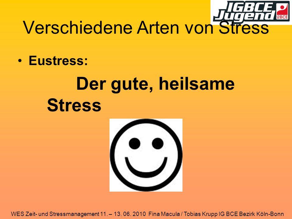 WES Zeit- und Stressmanagement 11. – 13. 06. 2010 Fina Macula / Tobias Krupp IG BCE Bezirk Köln-Bonn Verschiedene Arten von Stress Eustress: Der gute,