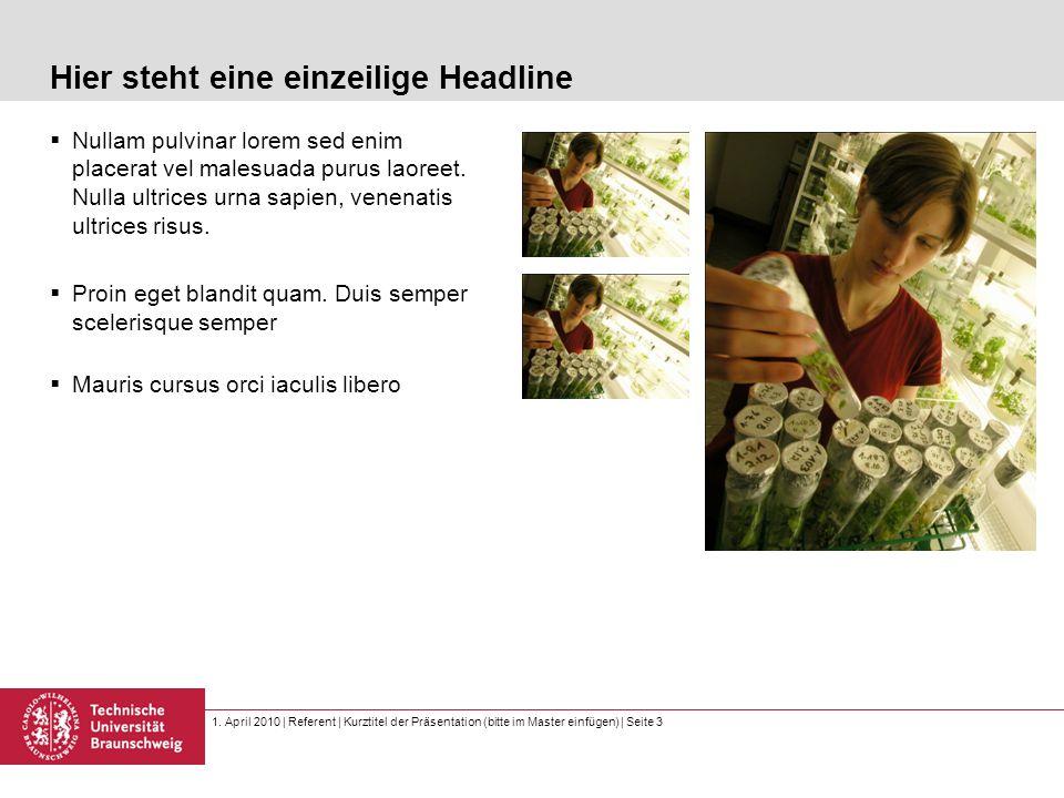 1. April 2010 | Referent | Kurztitel der Präsentation (bitte im Master einfügen) | Seite 3 Hier steht eine einzeilige Headline  Nullam pulvinar lorem