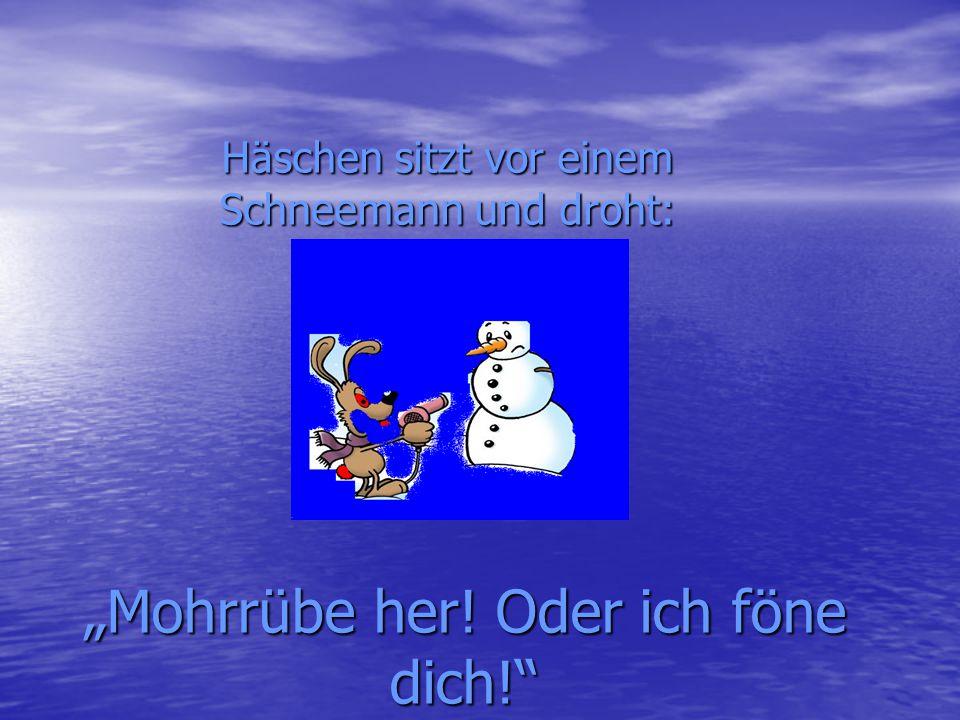 """""""Mohrrübe her! Oder ich föne dich!"""" Häschen sitzt vor einem Schneemann und droht:"""