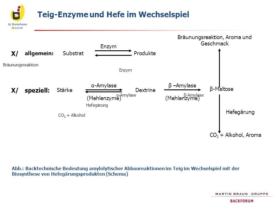 Abb.: Backtechnische Bedeutung amylolytischer Abbaureaktionen im Teig im Wechselspiel mit der Biosynthese von Hefegärungsprodukten (Schema) Bräunungsr