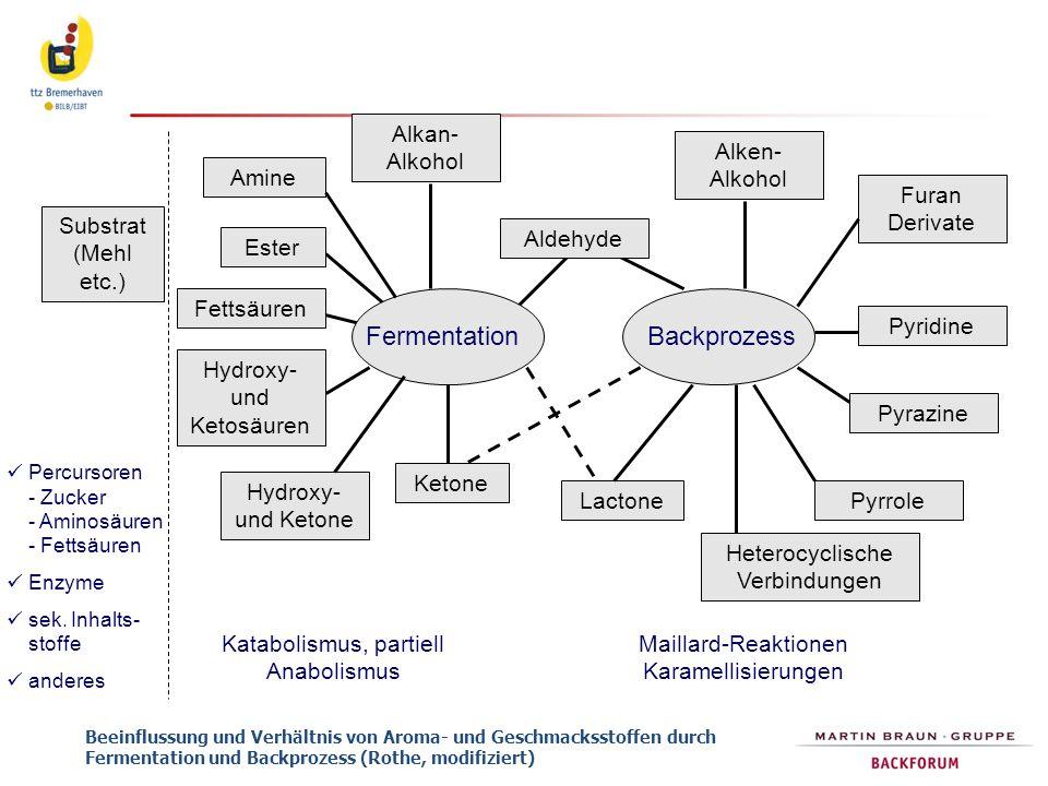 Beeinflussung und Verhältnis von Aroma- und Geschmacksstoffen durch Fermentation und Backprozess (Rothe, modifiziert) Percursoren - Zucker - Aminosäur
