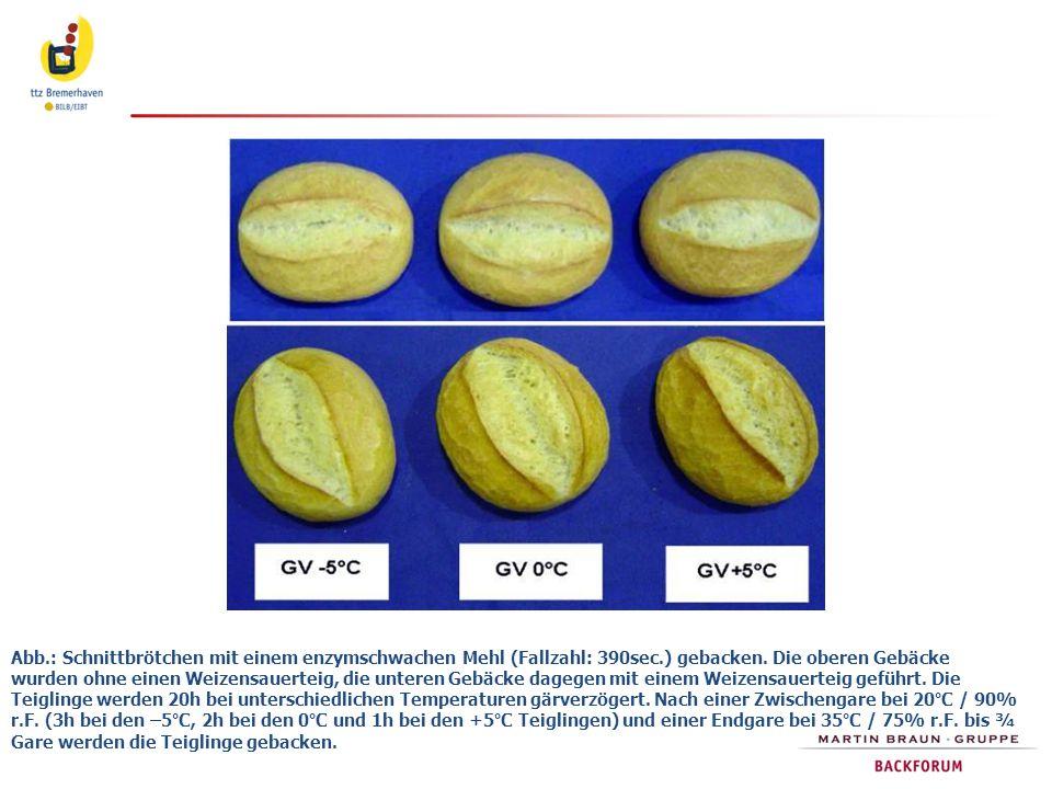 Abb.: Schnittbrötchen mit einem enzymschwachen Mehl (Fallzahl: 390sec.) gebacken. Die oberen Gebäcke wurden ohne einen Weizensauerteig, die unteren Ge