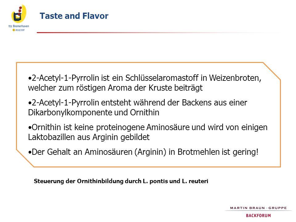 Bildung von 2-Acetyl-Pyrrolin bei der Brotherstellung Thiele, Gänzle, Vogel 2002 Cereal Chem 79:45; 2003, J.