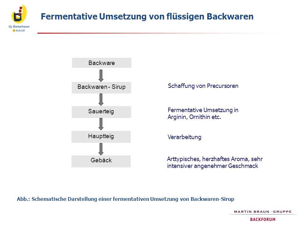 Fermentative Umsetzung von flüssigen Backwaren Backware Backwaren - Sirup Sauerteig Hauptteig Gebäck Schaffung von Precursoren Fermentative Umsetzung