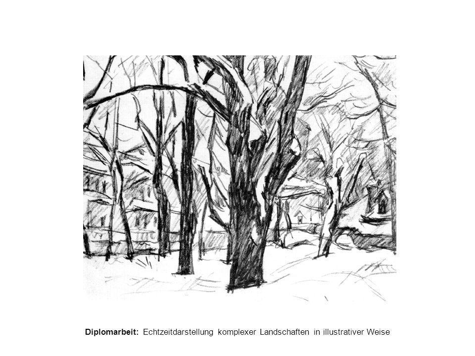 Diplomarbeit: Echtzeitdarstellung komplexer Landschaften in illustrativer Weise Realisierung  C++, OpenGL, Cg (C for graphics)  Cg  Datenflussmodell  Vertex- und Fragment-Shader  Grafikkarte der 4.
