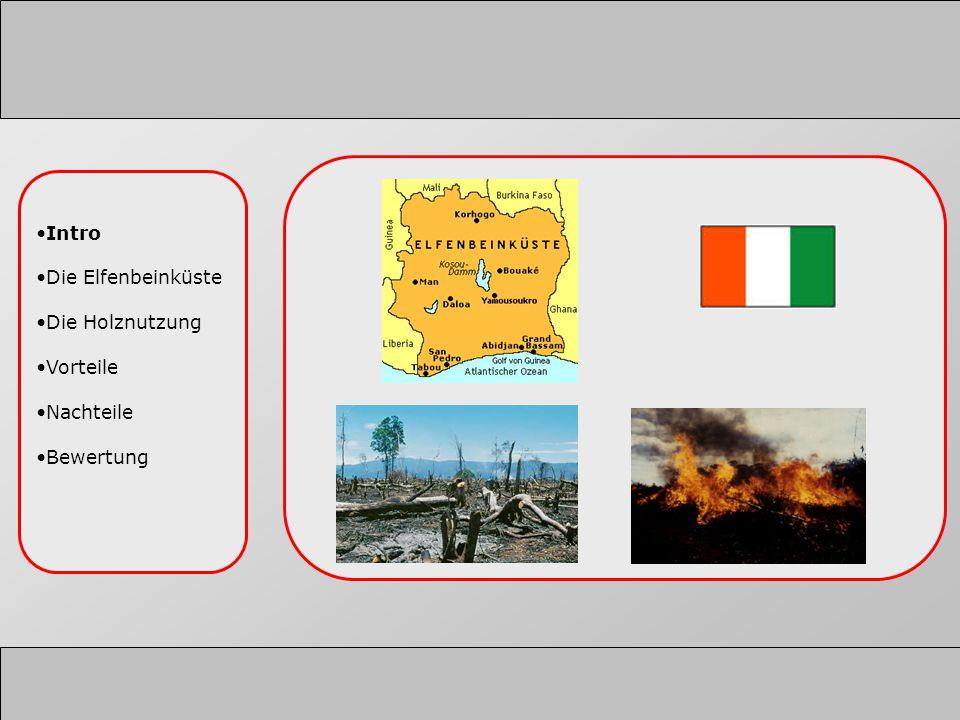 Intro Die Elfenbeinküste Die Holznutzung Vorteile Nachteile Bewertung