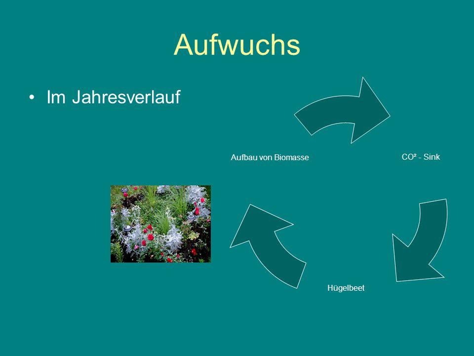 Lösung Nachhaltige Rekultivierung Hügelbeet CO²- Fixierung Hügelbeetkultu r Aufbau von Biomasse