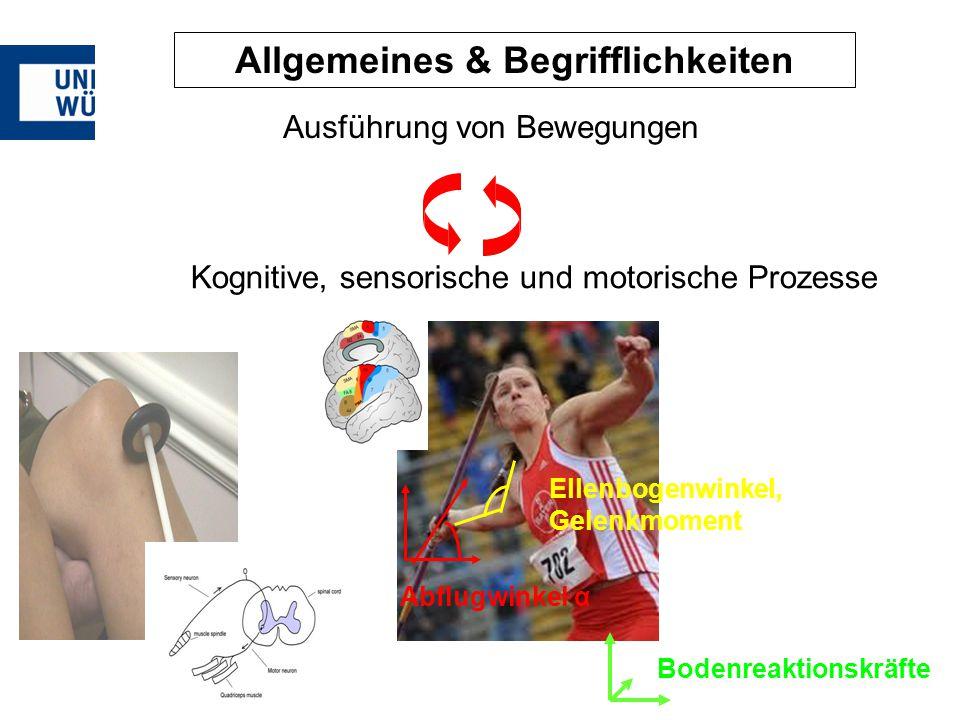 Abflugwinkel α Ellenbogenwinkel, Gelenkmoment Bodenreaktionskräfte Allgemeines & Begrifflichkeiten Ausführung von Bewegungen Kognitive, sensorische un