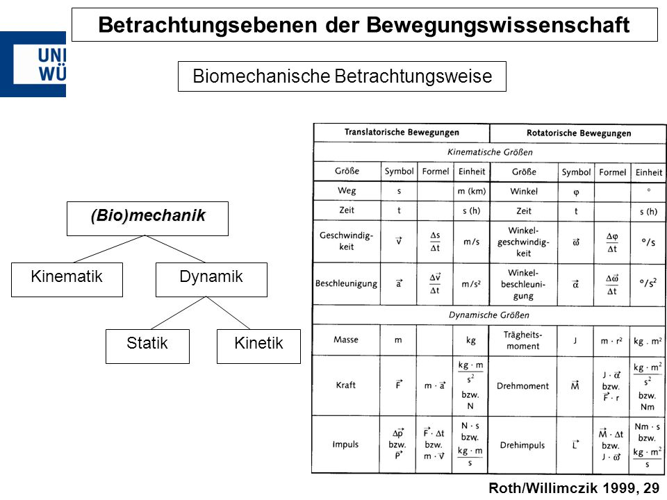 Biomechanische Betrachtungsweise Dynamik (Bio)mechanik Kinematik StatikKinetik Betrachtungsebenen der Bewegungswissenschaft Roth/Willimczik 1999, 29