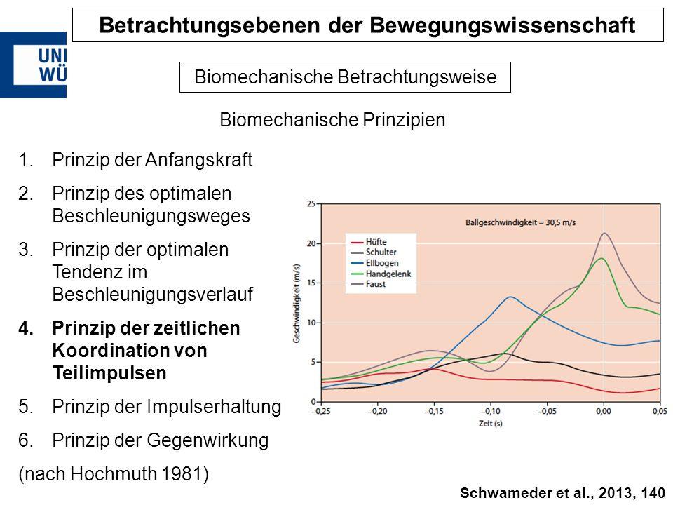 Biomechanische Prinzipien Biomechanische Betrachtungsweise 1.Prinzip der Anfangskraft 2.Prinzip des optimalen Beschleunigungsweges 3.Prinzip der optim