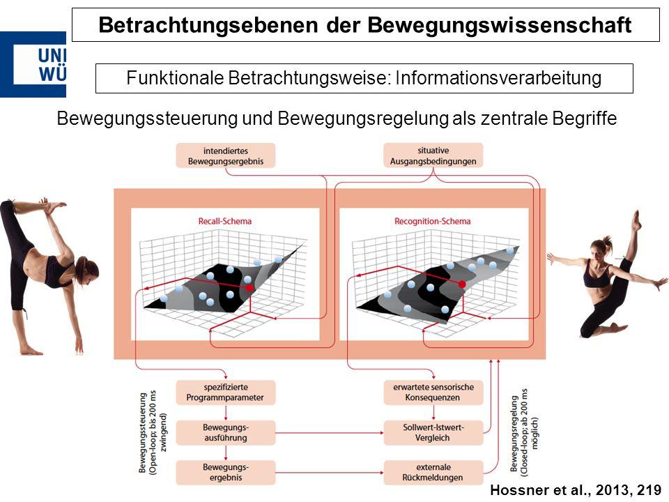 Bewegungssteuerung und Bewegungsregelung als zentrale Begriffe Funktionale Betrachtungsweise: Informationsverarbeitung Betrachtungsebenen der Bewegung