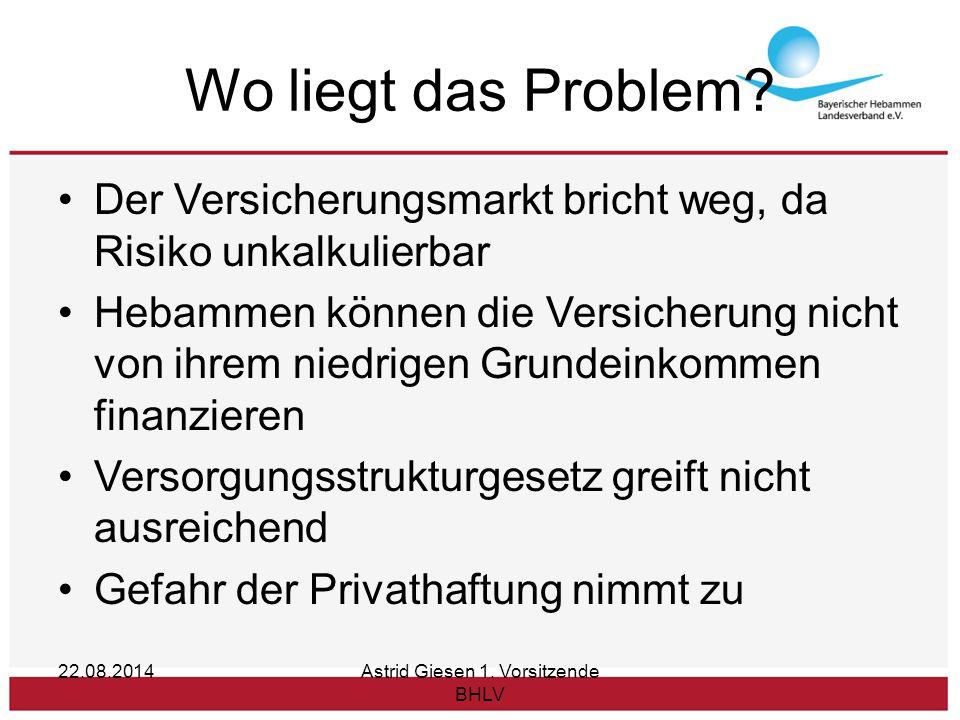 22.08.2014Astrid Giesen 1. Vorsitzende BHLV Wo liegt das Problem.