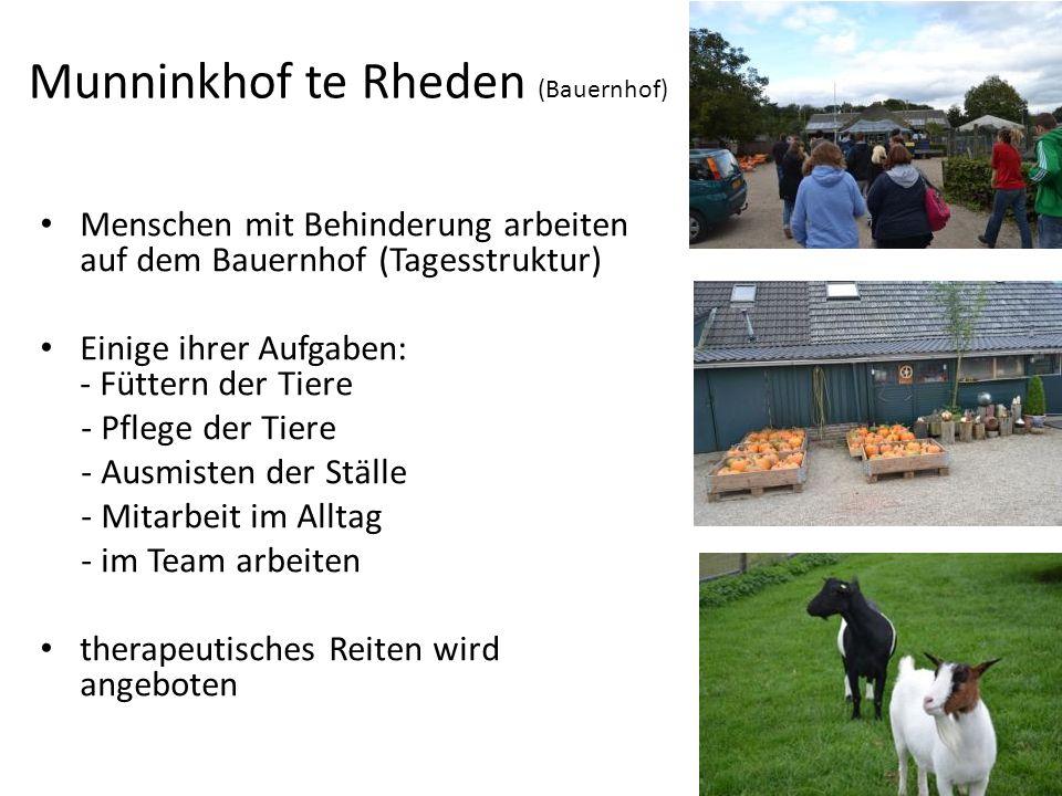 Munninkhof te Rheden (Bauernhof) Menschen mit Behinderung arbeiten auf dem Bauernhof (Tagesstruktur) Einige ihrer Aufgaben: - Füttern der Tiere - Pflege der Tiere - Ausmisten der Ställe - Mitarbeit im Alltag - im Team arbeiten therapeutisches Reiten wird angeboten