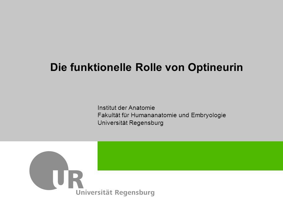 Die funktionelle Rolle von Optineurin Institut der Anatomie Fakultät für Humananatomie und Embryologie Universität Regensburg