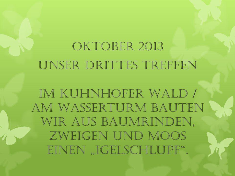 """Oktober 2013 UNSER drittes TREFFEN Im Kuhnhofer Wald / am Wasserturm bauten wir aus Baumrinden, Zweigen und Moos einen """"Igelschlupf ."""