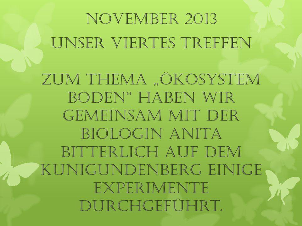 """november 2013 UNSER viertes TREFFEN Zum Thema """"Ökosystem Boden haben wir gemeinsam mit der Biologin Anita Bitterlich auf dem Kunigundenberg einige Experimente durchgeführt."""