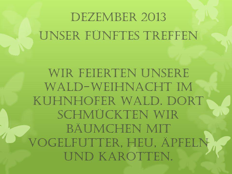 Dezember 2013 UNSER fünftes TREFFEN Wir feierten unsere Wald-Weihnacht im Kuhnhofer Wald. Dort schmückten wir Bäumchen mit Vogelfutter, Heu, Äpfeln un