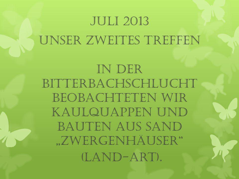 """Juli 2013 UNSER zweites TREFFEN In der Bitterbachschlucht beobachteten wir Kaulquappen und bauten aus Sand """"Zwergenhäuser"""" (Land-Art)."""