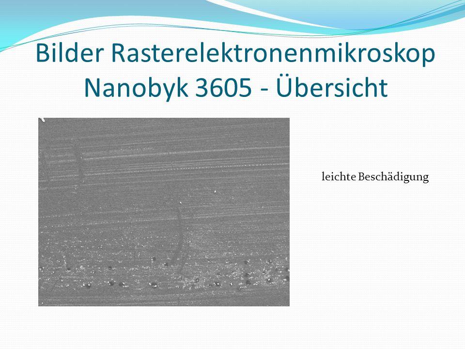 Bilder Rasterelektronenmikroskop Nanobyk 3605 - Übersicht leichte Beschädigung