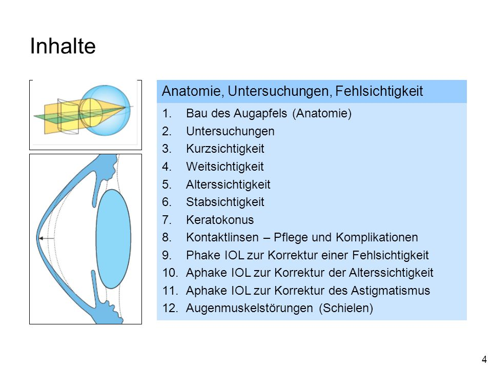 4 Inhalte Anatomie, Untersuchungen, Fehlsichtigkeit 1.Bau des Augapfels (Anatomie) 2.Untersuchungen 3.Kurzsichtigkeit 4.Weitsichtigkeit 5.Alterssichti