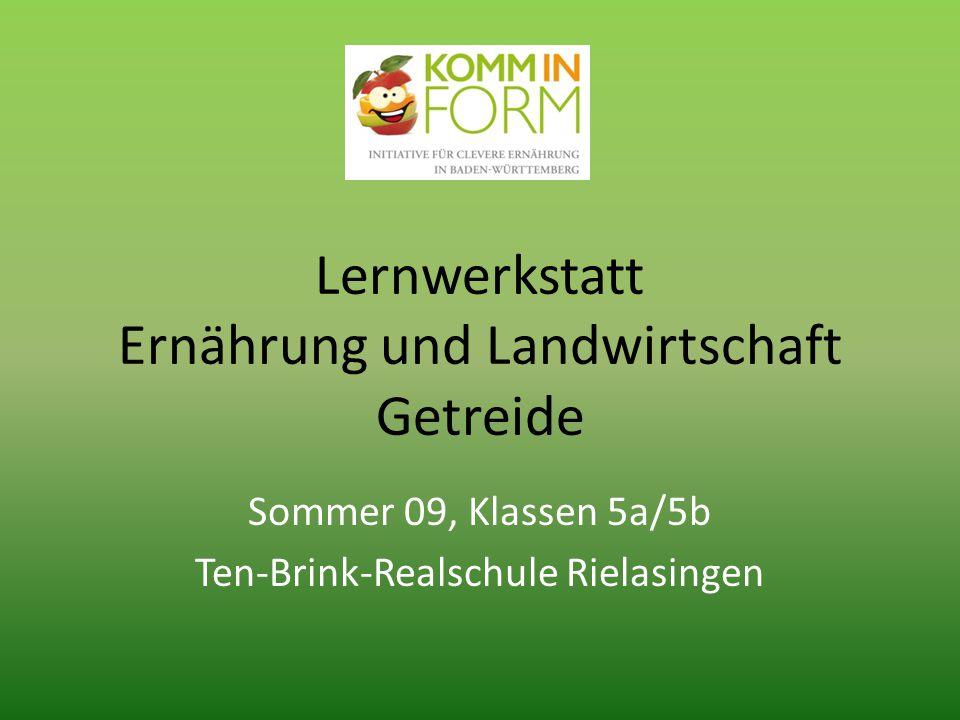Lernwerkstatt Ernährung und Landwirtschaft Getreide Sommer 09, Klassen 5a/5b Ten-Brink-Realschule Rielasingen