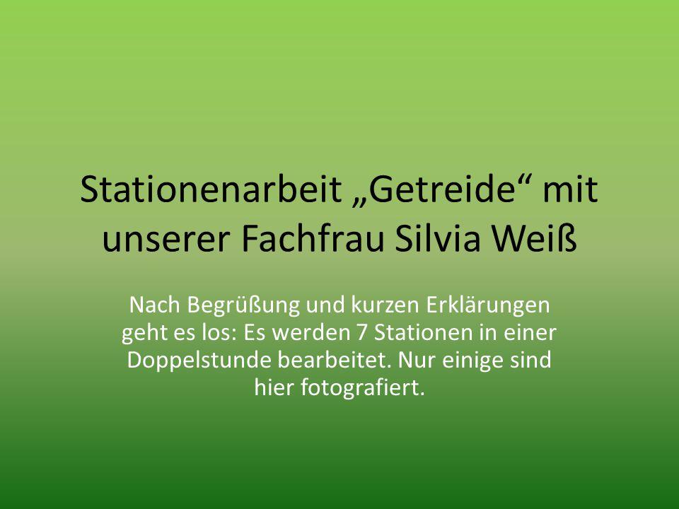 """Stationenarbeit """"Getreide"""" mit unserer Fachfrau Silvia Weiß Nach Begrüßung und kurzen Erklärungen geht es los: Es werden 7 Stationen in einer Doppelst"""