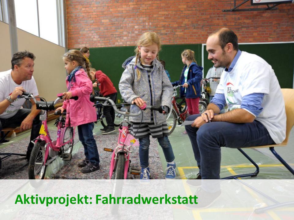 Aktivprojekt: Fahrradwerkstatt