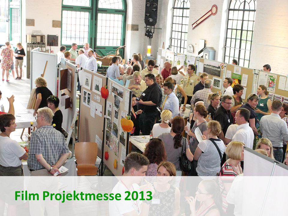 31 Film Projektmesse 2013