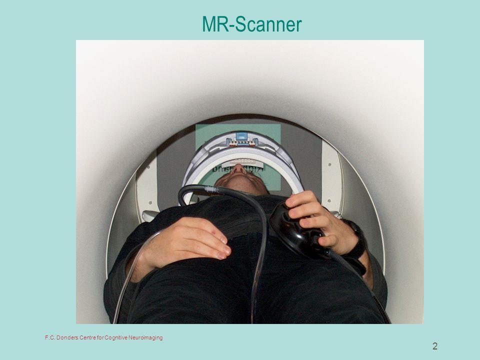 13 Functional MR scan: 16 horizontal slices (1 'volume')
