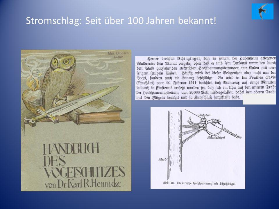 Stromschlag: Seit über 100 Jahren bekannt!