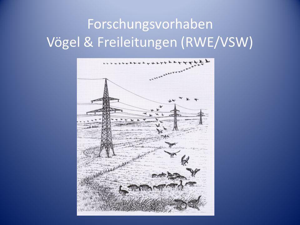 Forschungsvorhaben Vögel & Freileitungen (RWE/VSW)