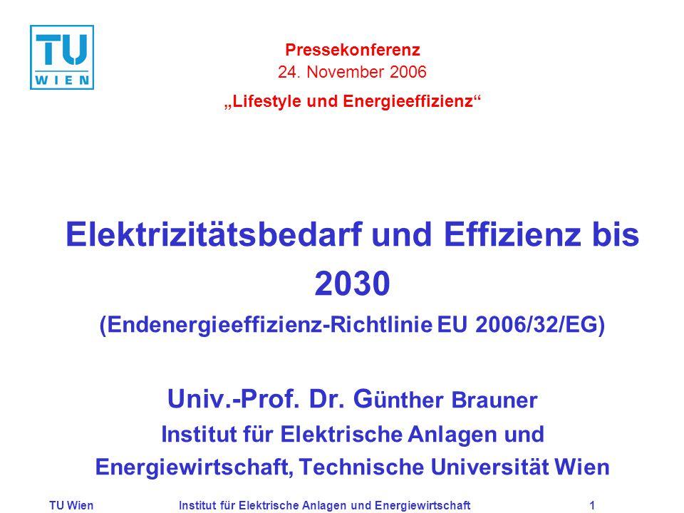 TU WienInstitut für Elektrische Anlagen und Energiewirtschaft1 Elektrizitätsbedarf und Effizienz bis 2030 (Endenergieeffizienz-Richtlinie EU 2006/32/EG) Univ.-Prof.