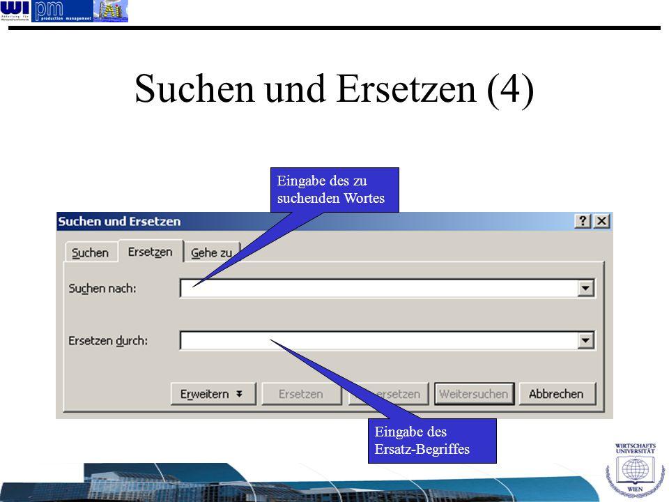 Eingabe des zu suchenden Wortes Eingabe des Ersatz-Begriffes Suchen und Ersetzen (4)