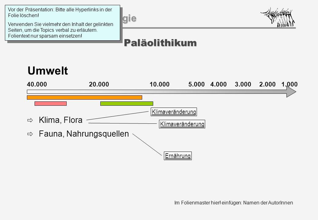 Im Folienmaster hier! einfügen: Namen der AutorInnen Geschichtspsychologie Paläolithikum Umwelt 40.000 20.000 1.000 10.0005.000 4.0003.0002.000  Klim