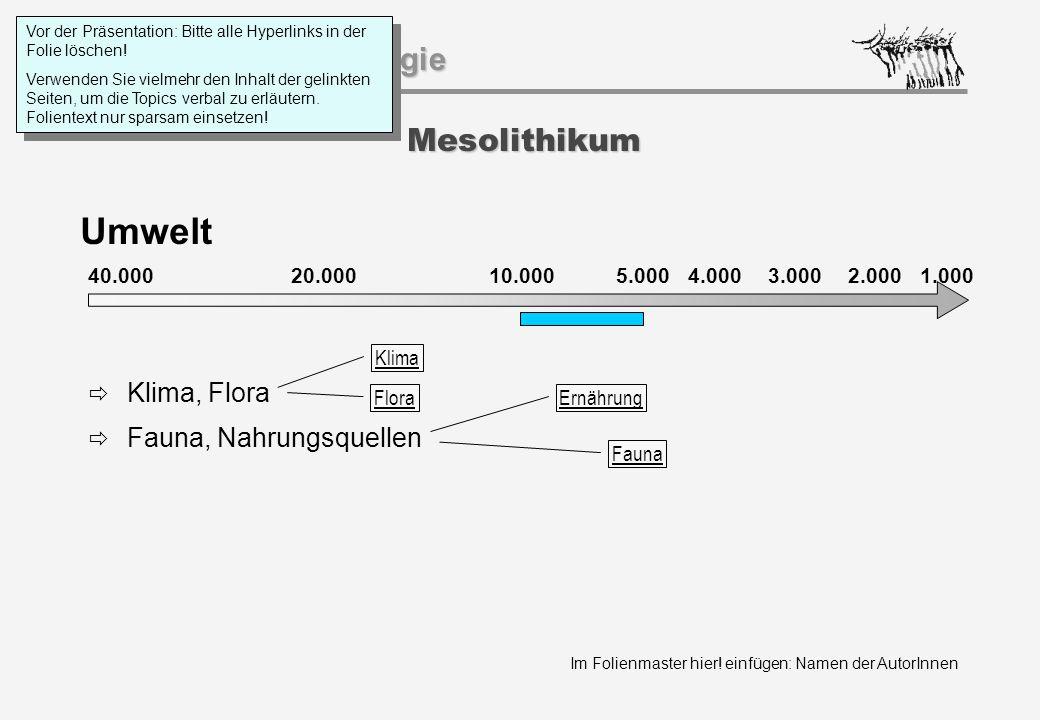 Im Folienmaster hier! einfügen: Namen der AutorInnen Geschichtspsychologie Mesolithikum Umwelt 40.000 20.000 1.000 10.0005.000 4.0003.0002.000  Klima