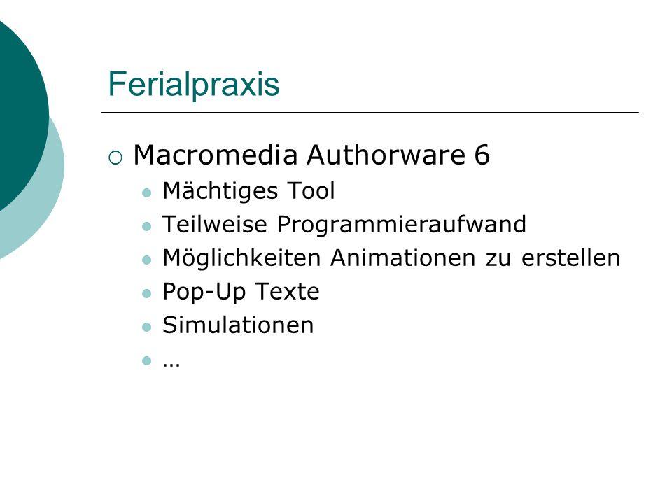 Ferialpraxis  Macromedia Authorware 6 Mächtiges Tool Teilweise Programmieraufwand Möglichkeiten Animationen zu erstellen Pop-Up Texte Simulationen …