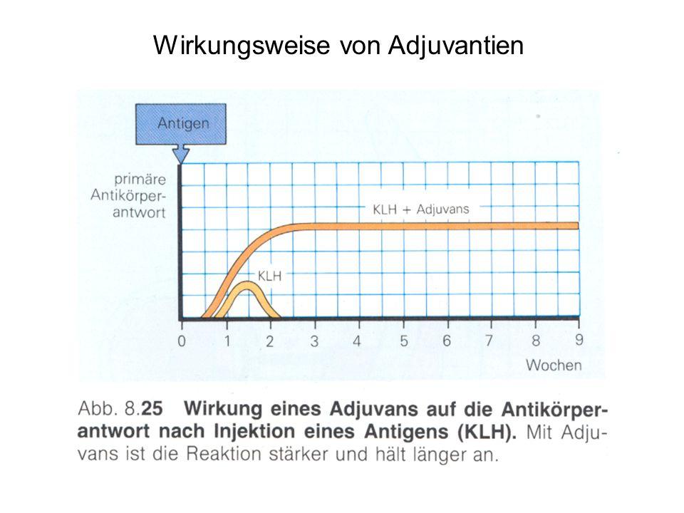 Wirkungsweise von Adjuvantien