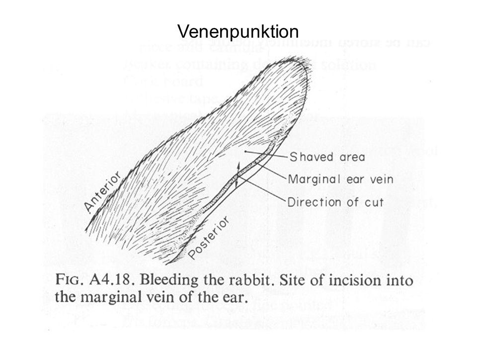 Venenpunktion