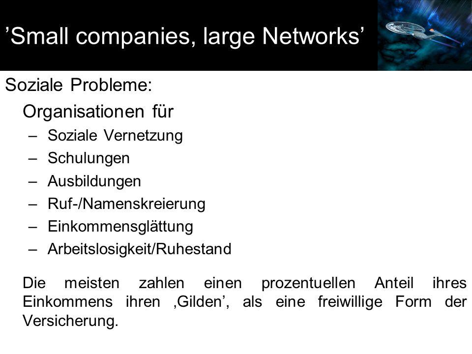 'Small companies, large Networks' Soziale Probleme: Organisationen für – Soziale Vernetzung – Schulungen – Ausbildungen – Ruf-/Namenskreierung – Einko