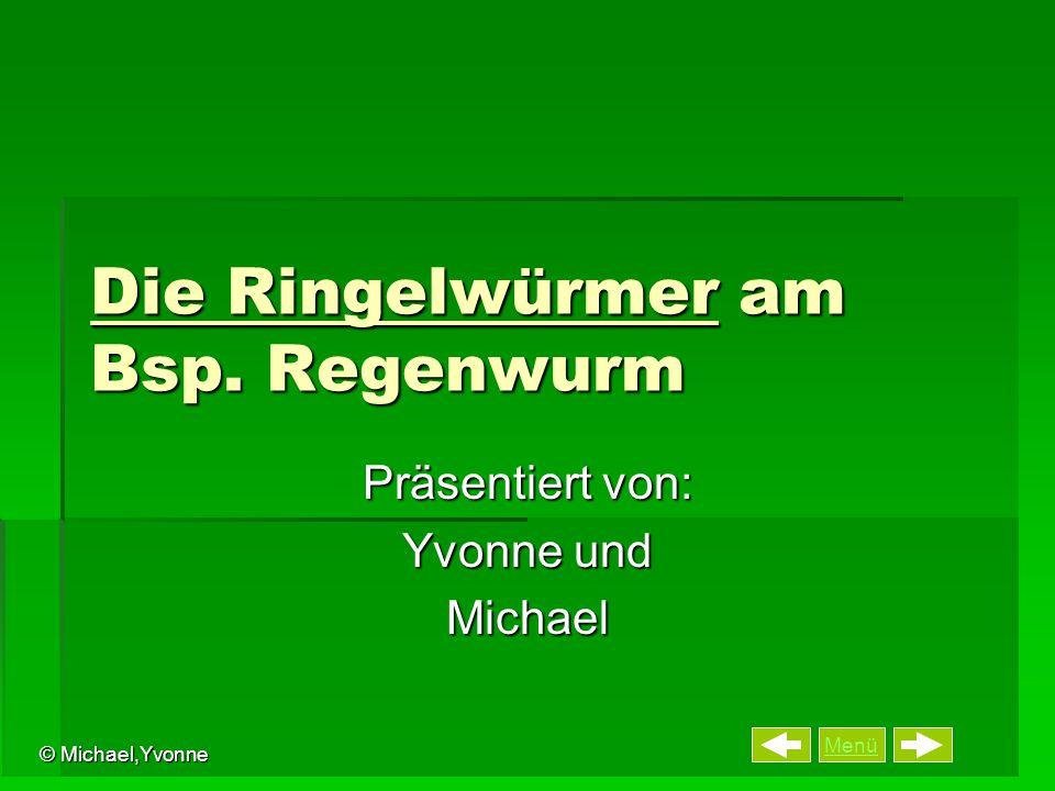 Menü © Michael,Yvonne Die Ringelwürmer am Bsp. Regenwurm Präsentiert von: Yvonne und Michael