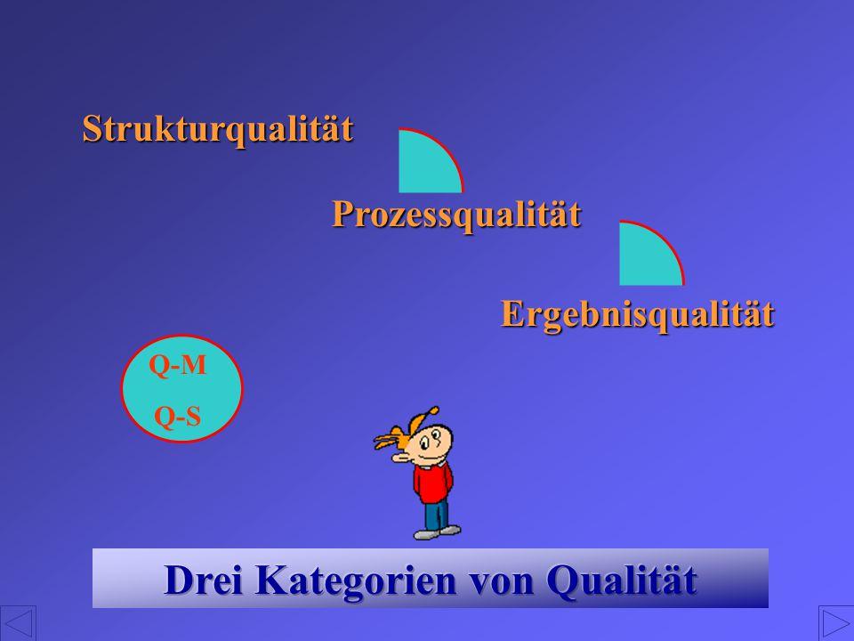 Strukturqualität Prozessqualität Ergebnisqualität Q-M Q-S