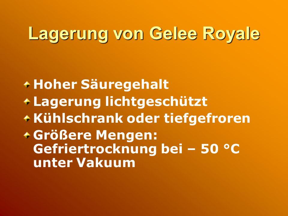 Lagerung von Gelee Royale Hoher Säuregehalt Lagerung lichtgeschützt Kühlschrank oder tiefgefroren Größere Mengen: Gefriertrocknung bei – 50 °C unter Vakuum