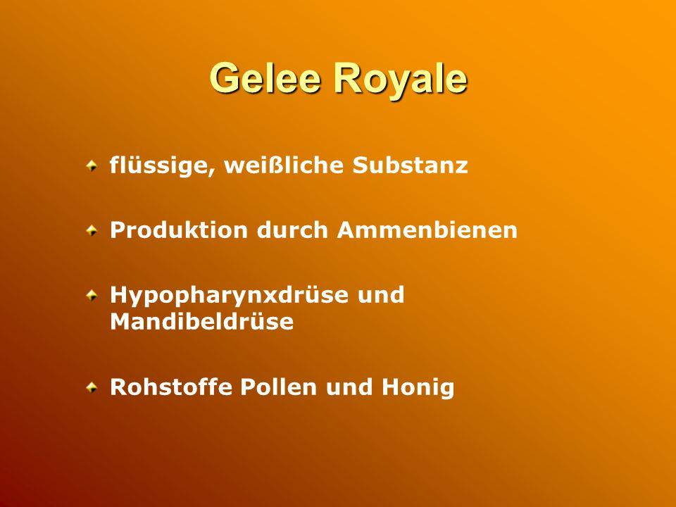 Gelee Royale flüssige, weißliche Substanz Produktion durch Ammenbienen Hypopharynxdrüse und Mandibeldrüse Rohstoffe Pollen und Honig