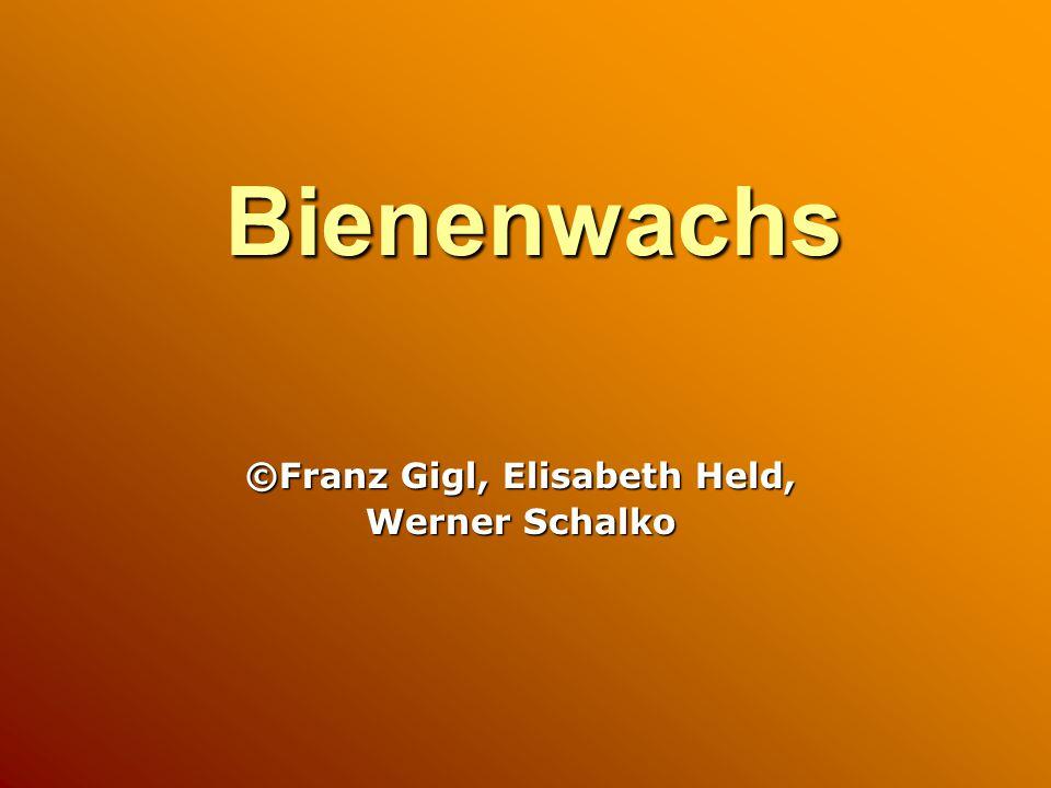 Bienenwachs ©Franz Gigl, Elisabeth Held, Werner Schalko