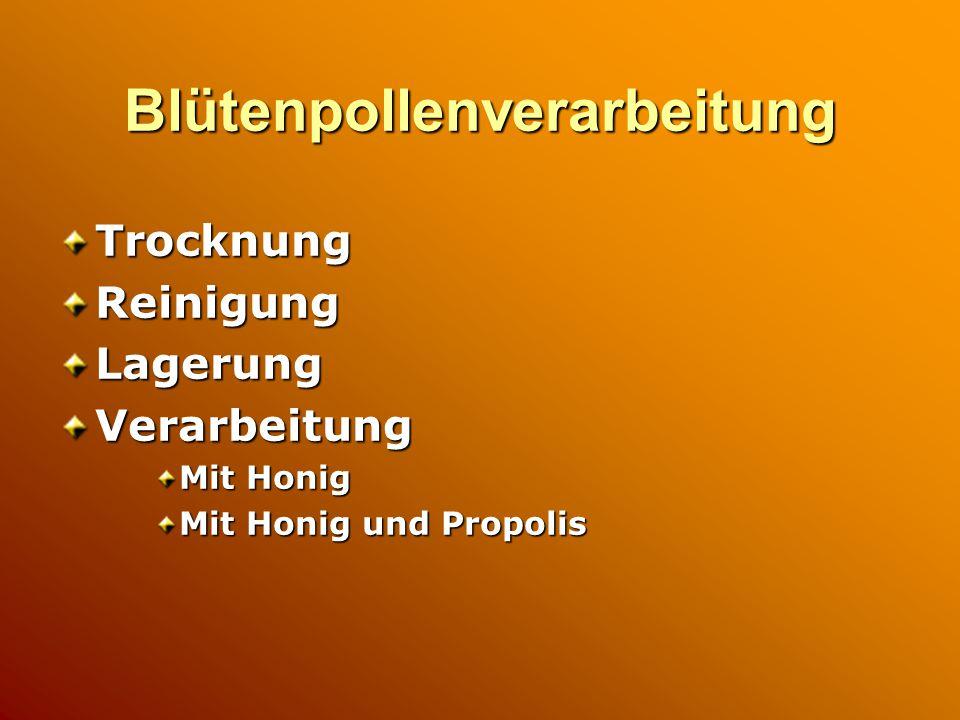 Blütenpollenverarbeitung TrocknungReinigungLagerungVerarbeitung Mit Honig Mit Honig und Propolis