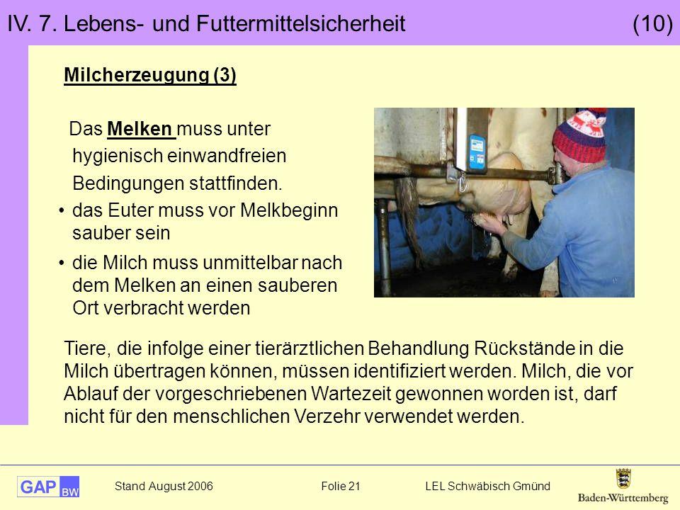 Stand August 2006 Folie 21 LEL Schwäbisch Gmünd IV. 7. Lebens- und Futtermittelsicherheit (10) Milcherzeugung (3) Das Melken muss unter hygienisch ein