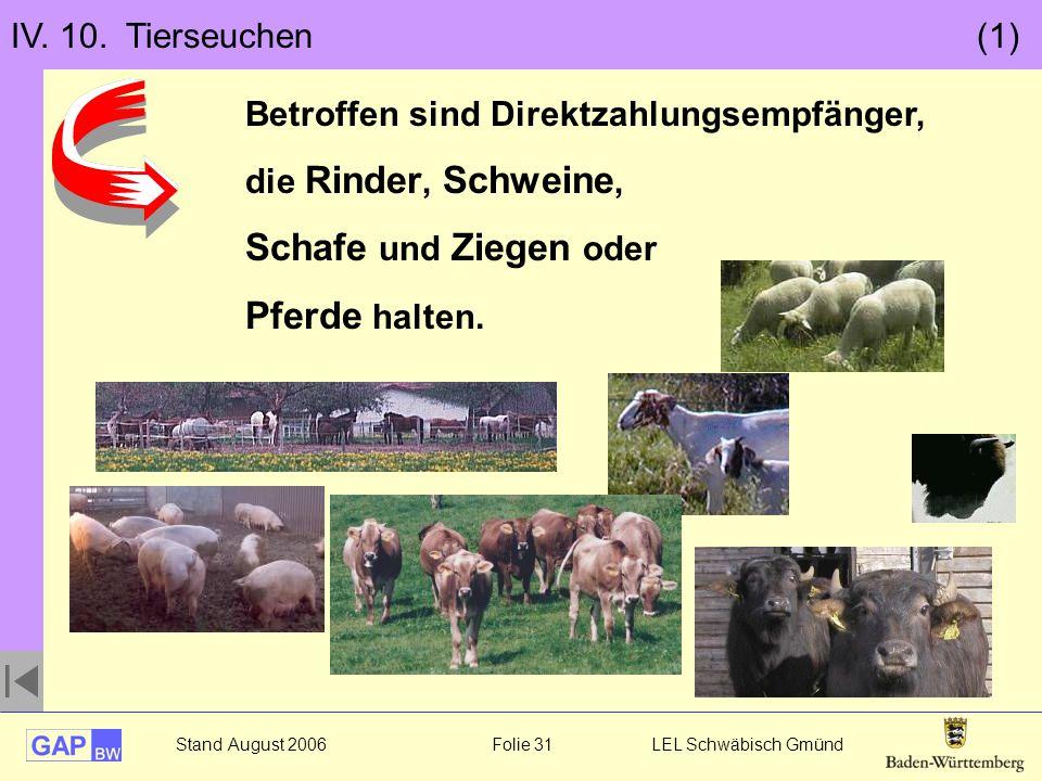Stand August 2006 Folie 31 LEL Schwäbisch Gmünd IV. 10. Tierseuchen (1) Betroffen sind Direktzahlungsempfänger, die Rinder, Schweine, Schafe und Ziege
