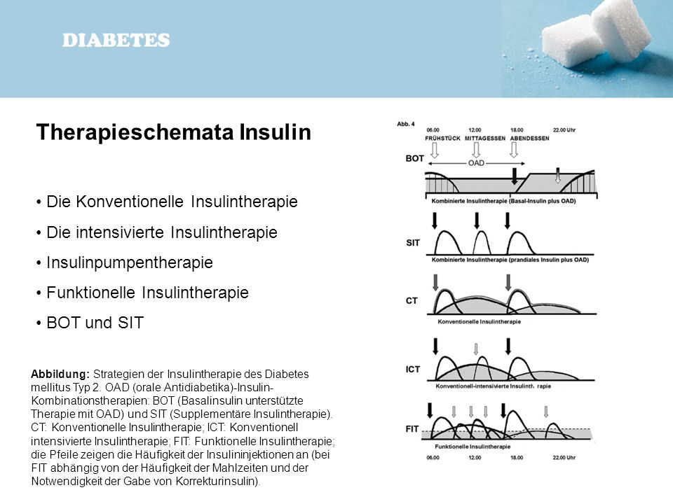 Therapieschemata Insulin Die Konventionelle Insulintherapie Die intensivierte Insulintherapie Insulinpumpentherapie Funktionelle Insulintherapie BOT u